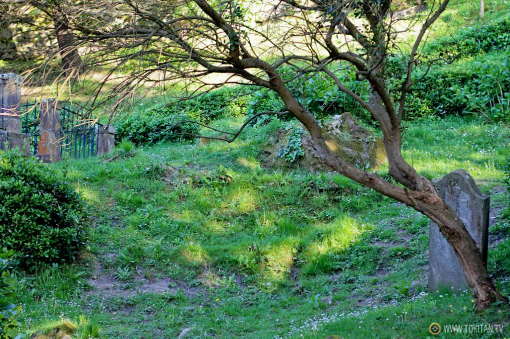 rincones_donostia_cementerio_ingleses_monte_urgull_castillo_mota_sansebastian_turismo
