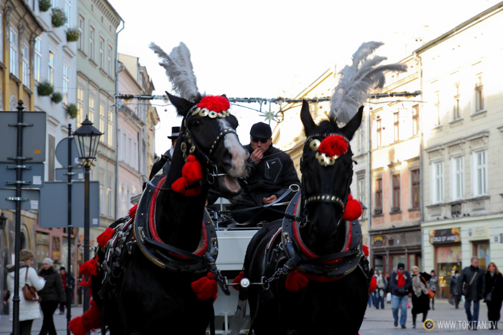 cracovia_stare_miasto_parte_vieja_muralla_carros_caballos