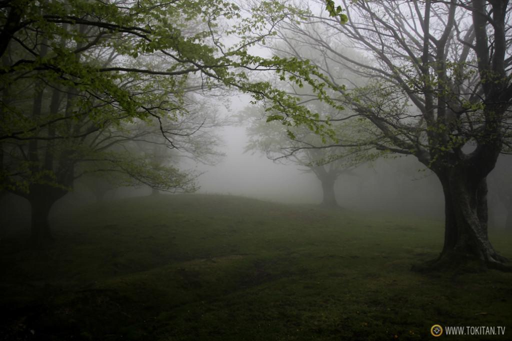 Llano de belabieta