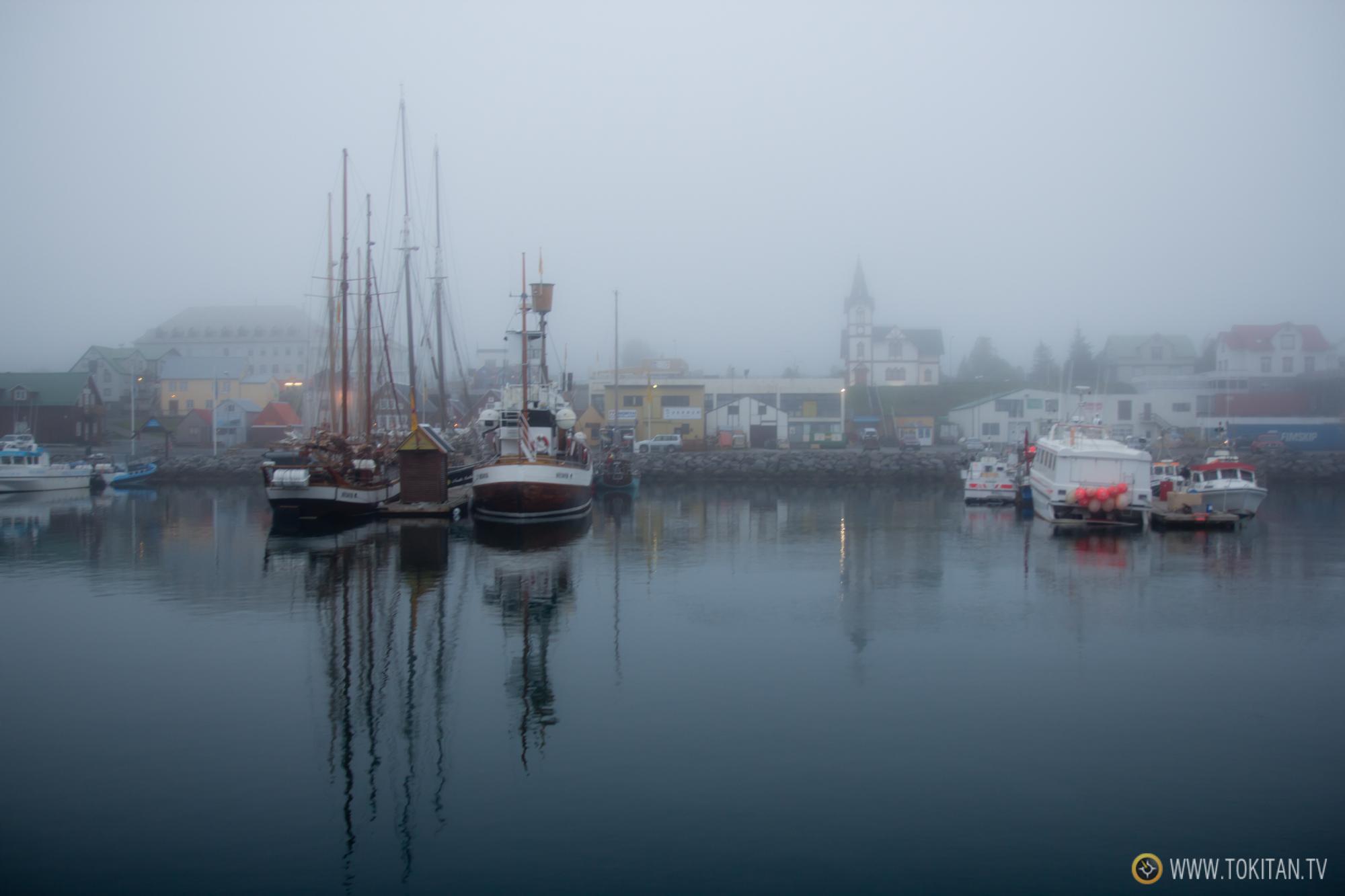 Avistamiento de Ballenas en Islandia, Husavík