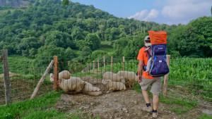 Viajar con niños: Todos somos sherpas