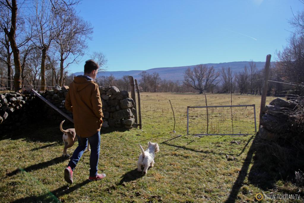 Un paseo con mi joven cuñado Víctor, Bourbon y Lola.