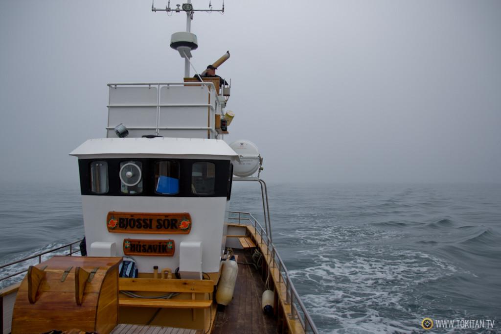 avistamiento_ballenas_islandia_husavik_north_sailing_barco_cetaceos_niebla