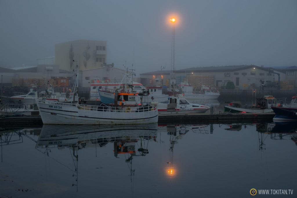 avistamiento_ballenas_islandia_husavik_north_sailing_puerto_husavik_cetaceos