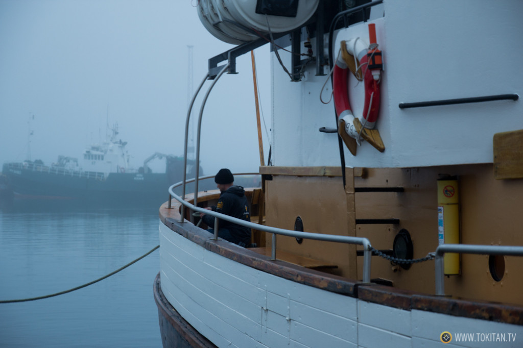 avistamiento_ballenas_islandia_husavik_north_sailing_puerto_husavik_north_sailing_cetaceos