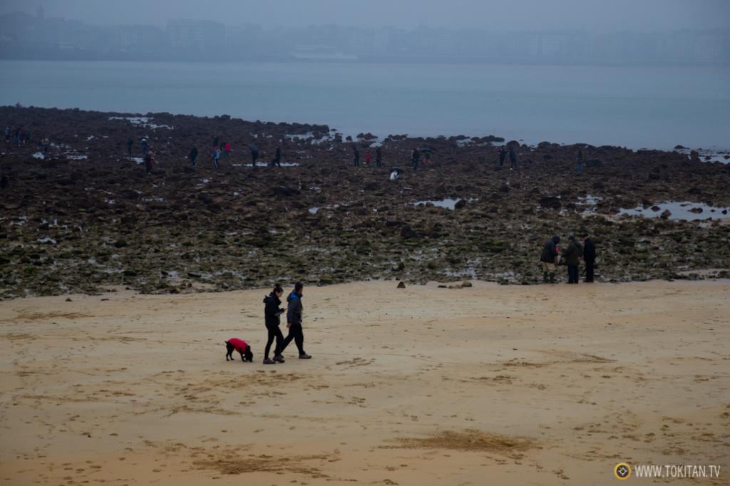 Numerosas personas curiosean entre las piedras de la playa de Ondarreta, esas de las que se quejan en verano.