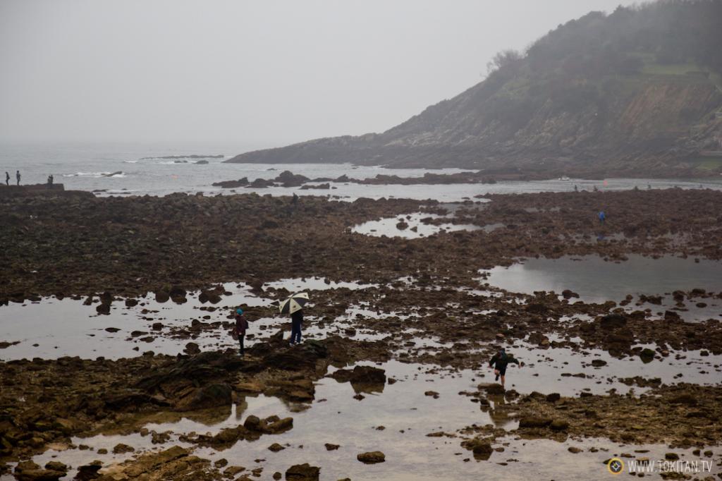 Las piedras y rocas que afloran en Ondarreta con las mareas vivas son sin duda las que más expectación generacn.