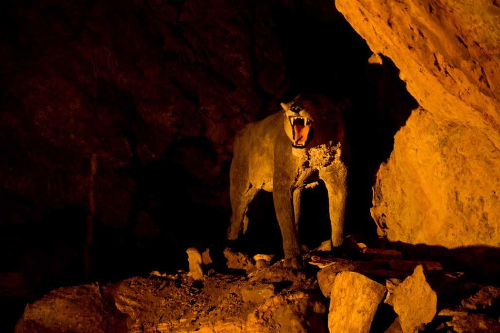 Un león cavernario que no se ha enterado de que ya se ha extinguido.