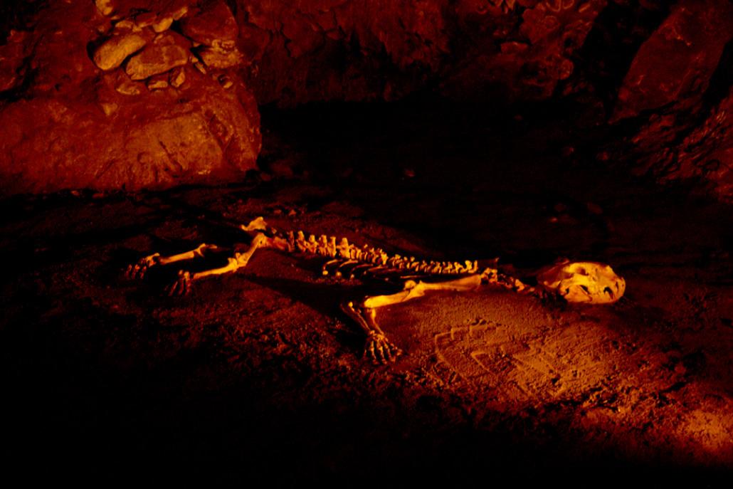 Reproducción del esqueleto del león cavernario hallado en la cueva de Arrikrutz.