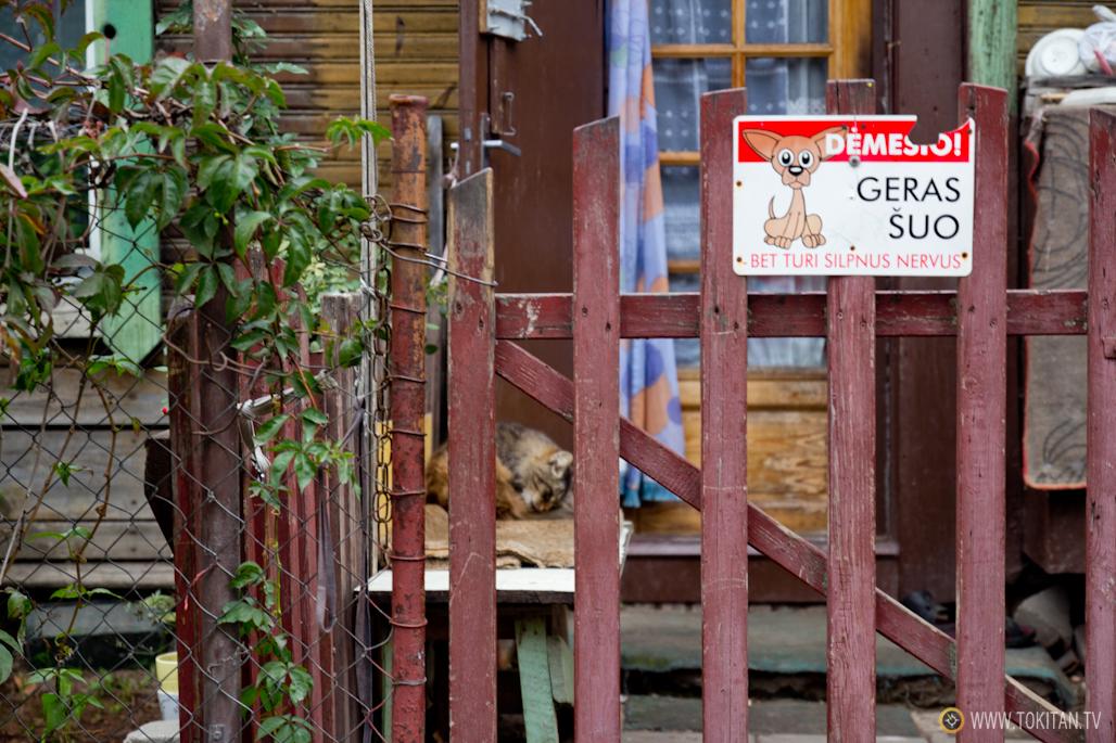 que_ver_hacer_vilnius_barrio_casas_madera_snipiskes_ Šnipiškės_lituania-gato