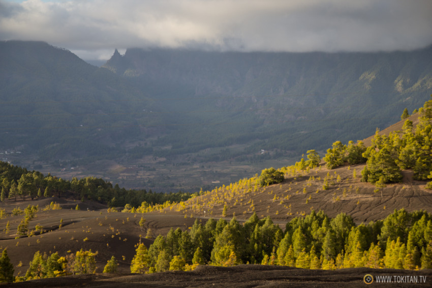 que-ver-la-palma-canarias-isla-bonita-rincones-paisajes-llano-jable-dunas-picon-pinar-pilar