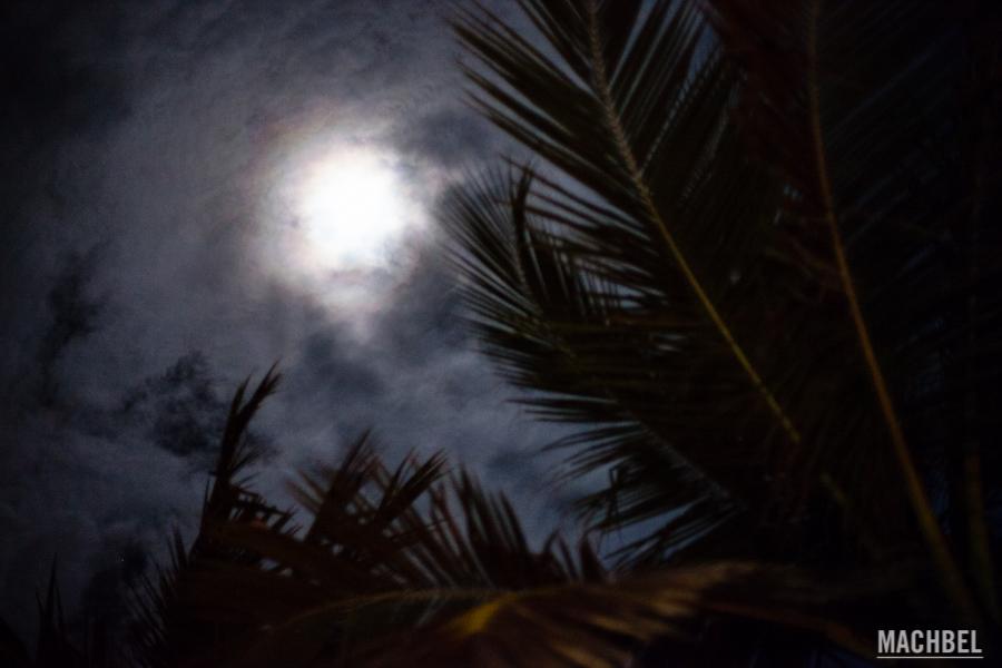 salir-fiesta-sri-lanka-colombo-danza-teatro-drama-bares-dia-poya-festividad-luna-llena