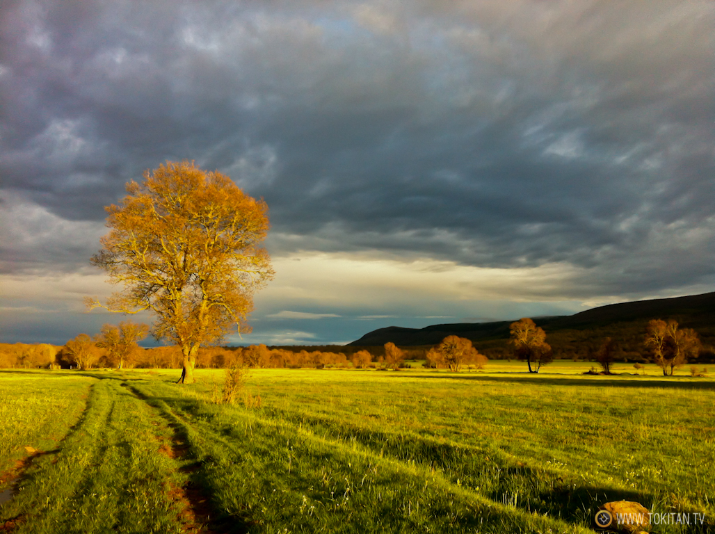 fenomenos-meteorologicos-montan%cc%83a-monte-nubes-atardecer-candilazo-puesta-sol-luces-rojas-amarillas
