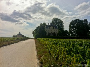 ruta_bicicleta_viñedos_burdeos_chateaux_castillos_bodegas_latour