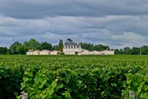 Château Puy Lacoste